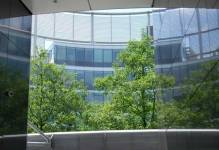 Zielone biuro przynosi korzyści pracownikom