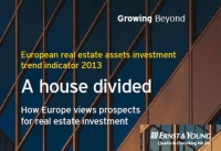 Ernst&Young Raport: A house divided
