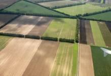 Wzrost cen gruntów Agencji Nieruchomości Rolnych o 17 proc.