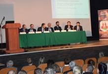 Bezpośrednie inwestycje zagraniczne w województwie wielkopolskim