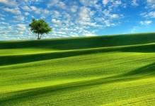 Hektar gruntu będzie nie tylko dla rolników