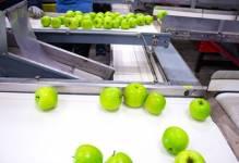 Producenci żywności potrzebują inwestycji
