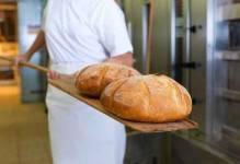 Piekarnia Tyrolska z zezwoleniem w W-MSSE