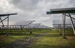 Panele słoneczne, farma fotowoltaiczna