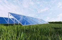 Pozyskiwanie gruntów pod OZE to cel nowej spółki
