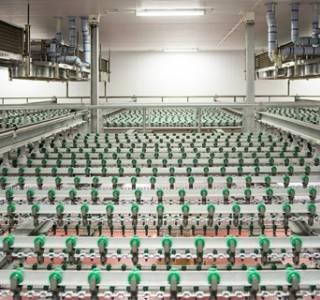 Szczecin: Drobimex wydaje 100 mln zł na rozbudowę i modernizację zakładów