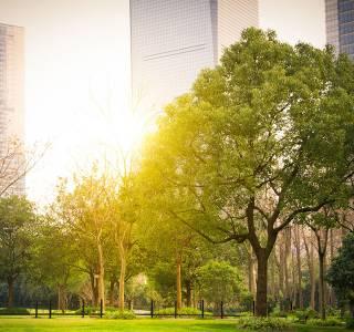 Uzupełnianie banków ziemi jest dziś kluczowym wyzwaniem dla deweloperów