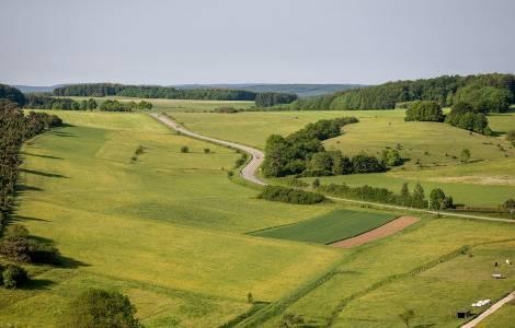 Teren Inwestycyjny Olechów w Łódzkiej SSE