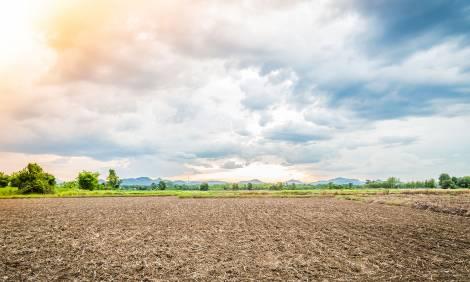 Wałbrzyska SSE pozyskała 26 ha terenów inwestycyjnych