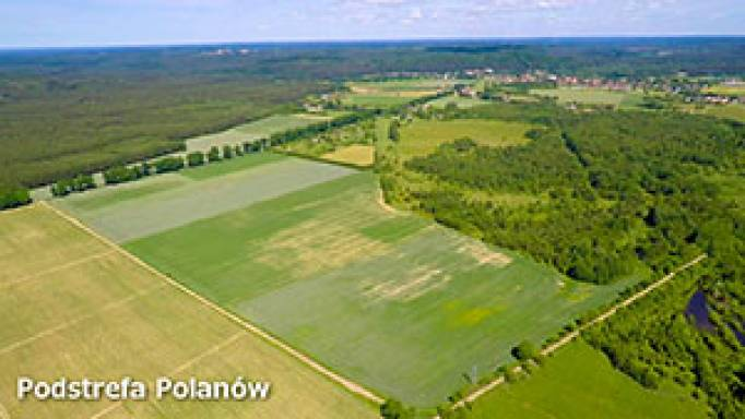 Podstrefa Polanów